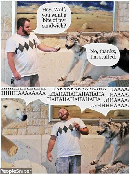 worst funny taxidermy jokes