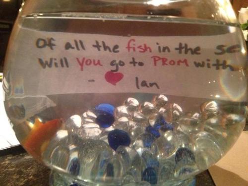 funny-prom-proposals-fish-sea