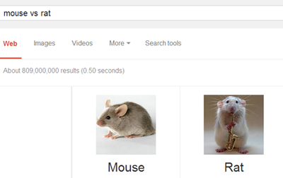 mouse-vs-rat