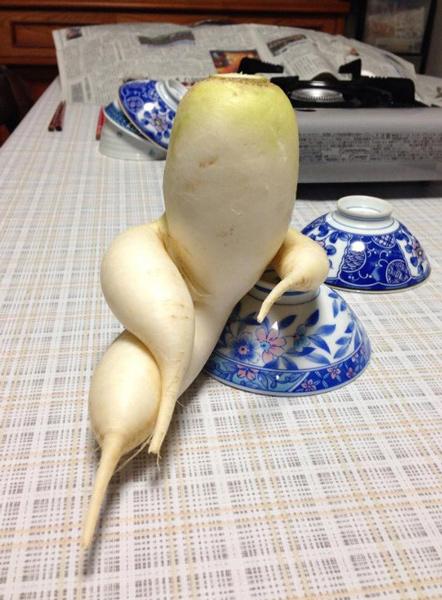 relaxing-beet