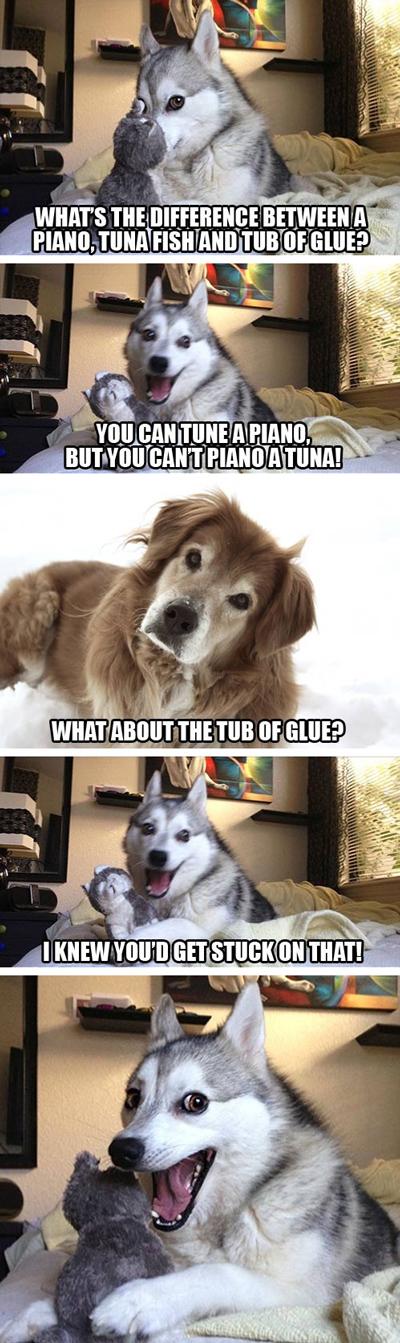 funny pun husky meme tuna fish glue