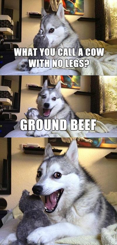 funny pun husky meme ground beef