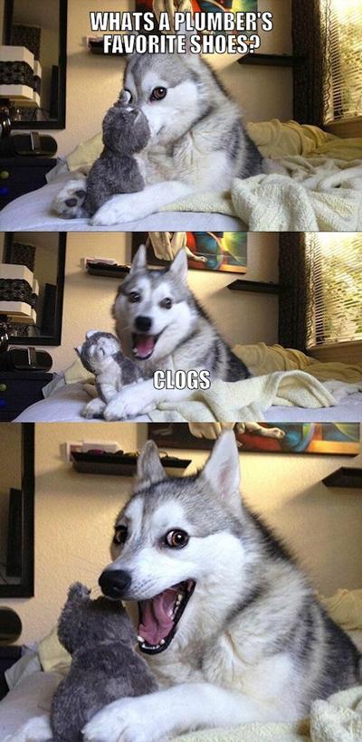 Funny Pun Husky Meme clogs plumber