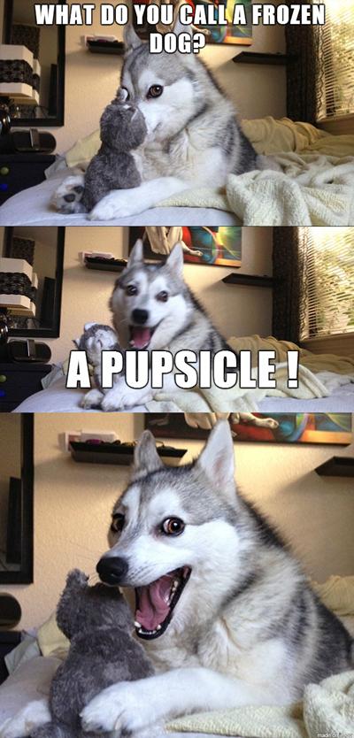 Funny Pun Husky Meme pupsicle