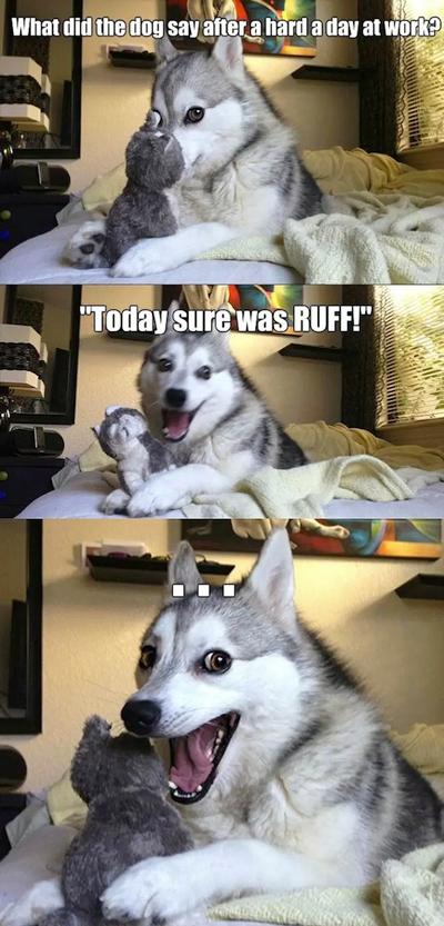 Funny Pun Husky Meme ruff day at work