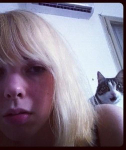 cat photobomb selfie
