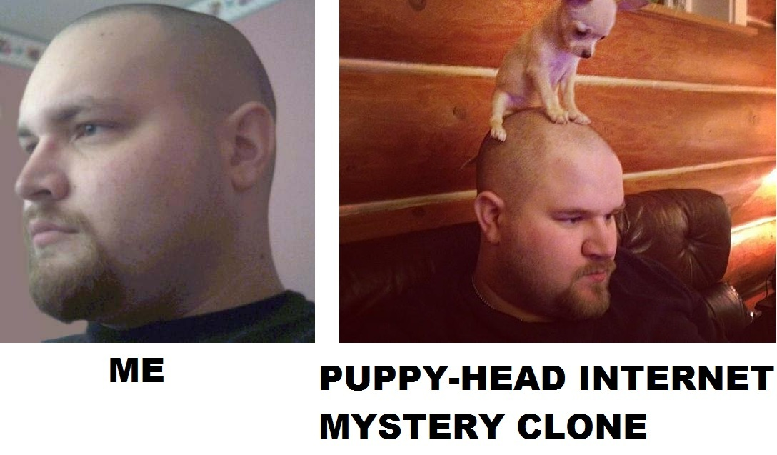 doppelganger bald guy with dog on his head