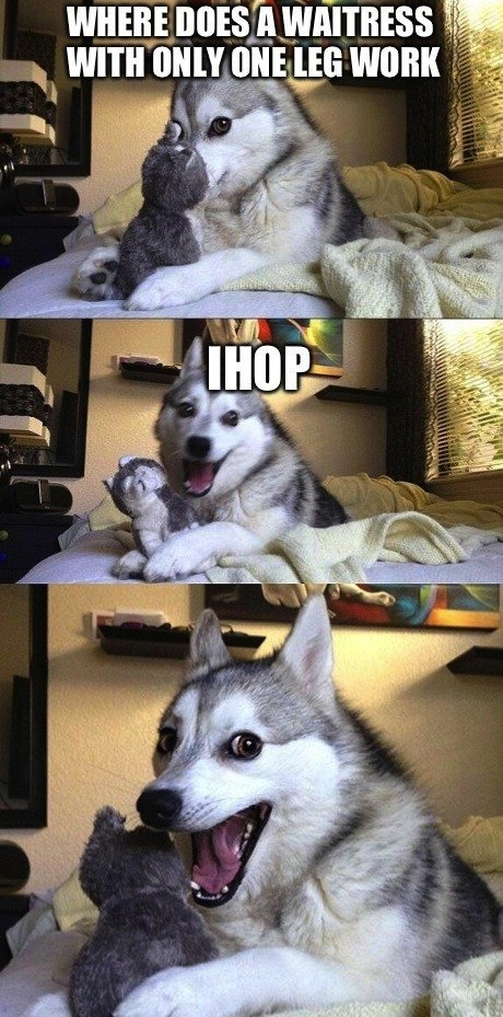 This Pun Dog Has a Few Jokes He Wants to Tell You