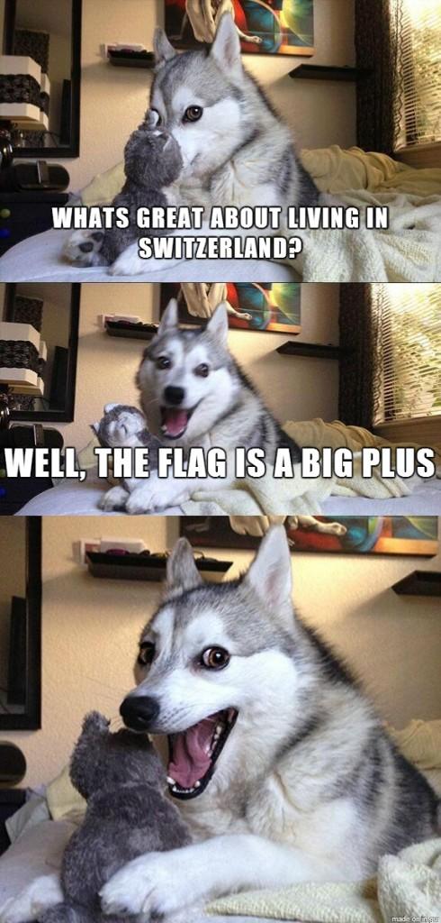 Pun Dog Switzerland Plus