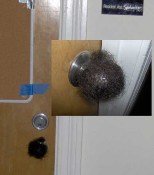 college pranks. Outrageous College Dorm Pranks   Dose of Funny